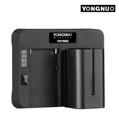 Зарядное устройство двухканальное YONGNUO YN750C