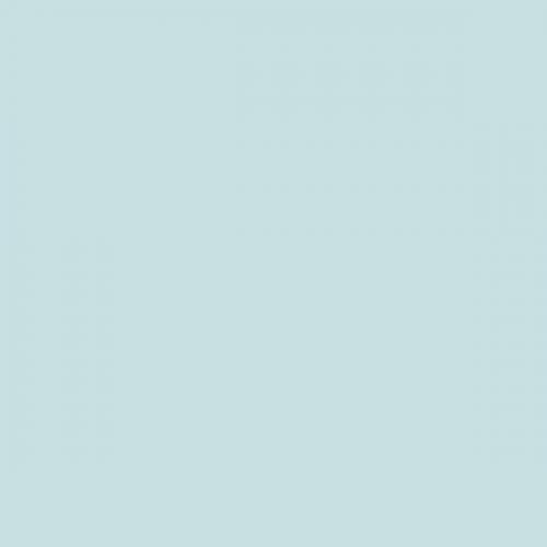 Фон бумажный Beauty 167 Бледно Голубой