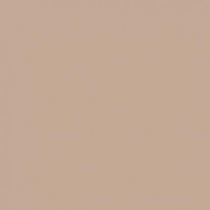 Фон бумажный SMALL Beauty 25 Темно Бежевый