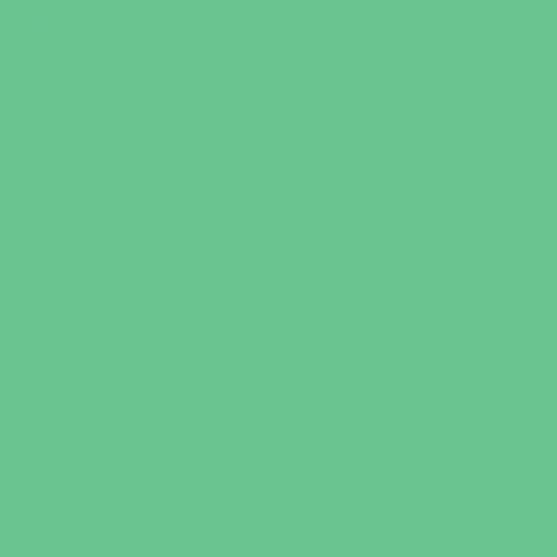 Фон бумажный Beauty 31 Зеленый Мятный