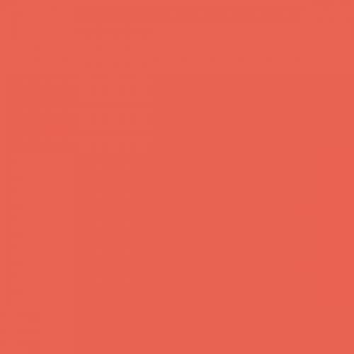 Фон бумажный Beauty 39 Морковный