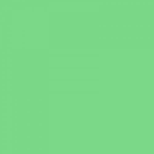 Фон бумажный Beauty 63 Светло-Зеленый