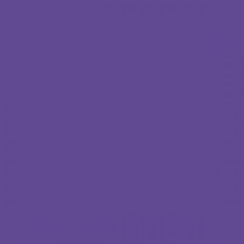 Фон бумажный Beauty 68 Фиолетовый