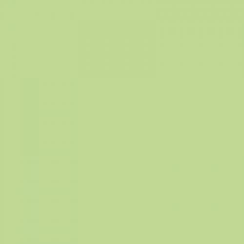 Фон бумажный Beauty 13 Тропический Зеленый