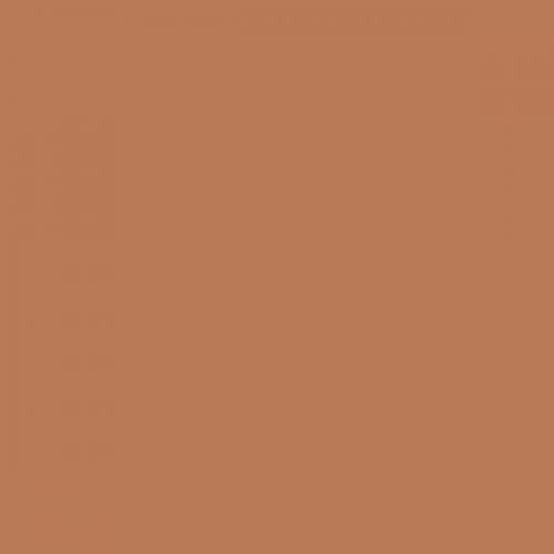 Фон бумажный Beauty 48 Мускатный орех