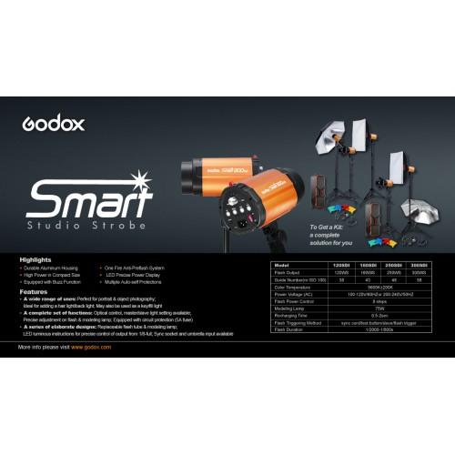 Комплект студийного света GODOX Smart Kit2 250SDI