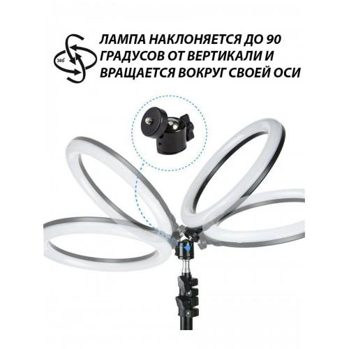 Кольцевая LED лампа 26см со штативом